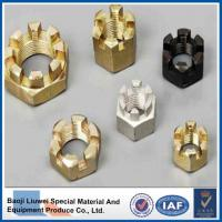 Buy cheap DIN935 Titanium Hexagon Slotted Nuts from wholesalers