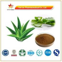 Wholesale Natural Herb Aloe Vera Extract Aloin from china suppliers