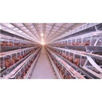 Buy cheap complete poultry chicken farm equipment for livestock from wholesalers