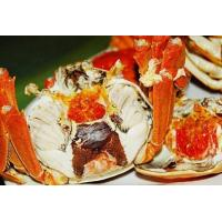 Wholesale Baoying lake crabs from china suppliers
