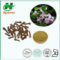 Buy cheap Cloves Powder Extract Plant&herb Extract from wholesalers