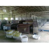 40kw microwave preserved fruits drying and sterilizing equipment Manufactures
