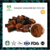 Buy cheap 100% Natural Chaga Mushroom Extract Powder from wholesalers