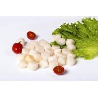 Wholesale Sea scallop from china suppliers