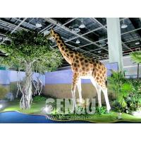 Buy cheap Giraffe(#GG-1405) Giraffe(#GG-1405) from wholesalers