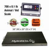 INDUSTRY SCALE MS-PET