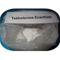 Wholesale Anabolic Steroid Powder Testosterone Enanthate Steroid CAS 315-37-7 For Weight Loss from china suppliers