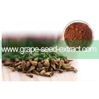 Buy cheap Nature grape seed extract additive free Polyphenols 90% from wholesalers