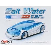 Wholesale Kiddie Corner Salt Water Fuel Cell Car from china suppliers