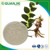 Buy cheap Water-soluble Resveratrol/ Polygonum Cuspidatum Extract Hot Sale With Top Quality from wholesalers
