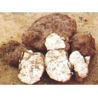 Buy cheap Herbal Extract Poria Cocos Extract from wholesalers