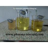 Buy cheap Test cypionate 250mg/ml from wholesalers
