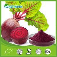 Wholesale Vegetable Powder Beet Powder from china suppliers