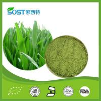 Wholesale Vegetable Powder Barley Grass Powder from china suppliers