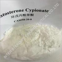 Buy cheap Testosterone Cypionate Powder from wholesalers