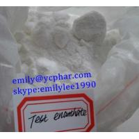 Buy cheap Legal Safe Testosterone Enanthate Steroids Powder To Promote Male Muscle Growth CAS 315-37-7 from wholesalers