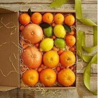 Wholesale Simply Fresh Winter Citrus NO.2 shenzhen gift hamper delivery from china suppliers