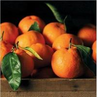 Buy cheap SATSUMA MANDARINS NO.34 deliver gift hamper to shenzhen product