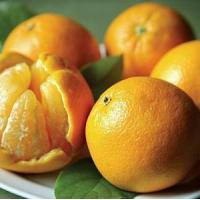Buy cheap CHRISTMAS ORANGES NO.36 deliver gift hamper to shenzhen from wholesalers