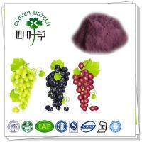Wholesale Ph-Intermediates Grapefruit juice powder from china suppliers