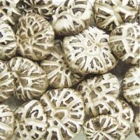 Wholesale Dried Chinese Cultivated Tea Flower Lentinus Edode Packed in customized bag from china suppliers