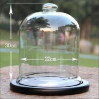 Wholesale D22*H 30cm Glass Bell Cloche For Display from china suppliers