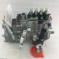 fuel Injection Pump BHF4PM10001 4PL203 40154668 Manufactures