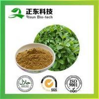 Buy cheap Siberian Ginseng Extrac 0.5%-1.5% Eleutheroside B+E from wholesalers