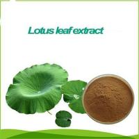 Buy cheap Inventory chinese medicine Rhubarb extract powder from wholesalers