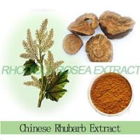 Buy cheap Chinese Herbal Medicine 10% anthraquinones rhubarb root extract in stock from wholesalers