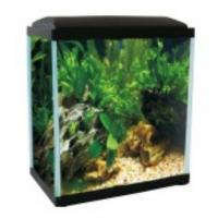 YG-11T Fish tank with LED lamp cover Manufactures
