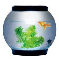FB-5L Fish bowl with LED lamp cover Manufactures
