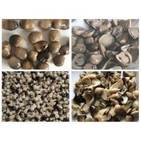 Buy cheap Canned Straw Mushrooms from wholesalers