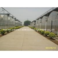 Wholesale Intelligent Film Greenhouse from china suppliers