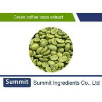 China Green coffee bean extract 50% Chlorogenic acids, Chlorogenic acid,Coffee Robusta Linden extract on sale