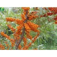 Buy cheap Organic Seabuckthorn Pulp Oil from wholesalers