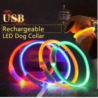led dog collar usb rechargeable Manufactures