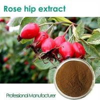 Wholesale High quality Vitamin C 500mg with Rose Hips chewable from china suppliers