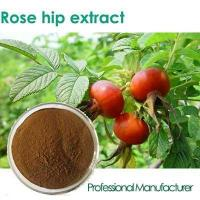 Buy cheap fructus rosae p.e. vitamin c tablet rose hip , rose hip extract capsule, vitamin c rosehip 1000mg from wholesalers
