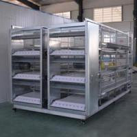 Buy cheap Cage Equipment Ordinary Broiler Chicken Cage from wholesalers