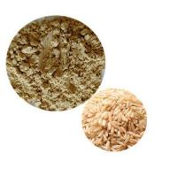 Buy cheap Organic Plant Protein Organic Brown Rice Protein 80% from wholesalers