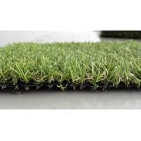 Wholesale High Density Monofil PE Artificial Turf Grass for Golf Field from china suppliers