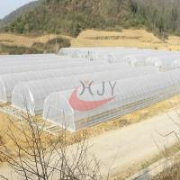 Buy cheap Agricultural Single Span Plastic Film Greenhouse from wholesalers