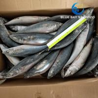 Buy cheap PACIFIC MACKEREL REF CODE QC 200-300G from wholesalers