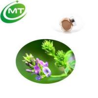 Wholesale 10:1 Medicago Sativa Plant Alfalfa Saponins Extract from china suppliers