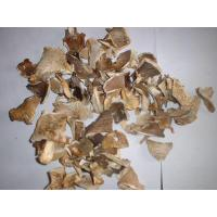Buy cheap Dried Pleurotus from wholesalers