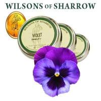 Buy cheap Nasal Snuff Wilsons Violet from wholesalers